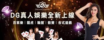 DG娛樂城邀你快試玩有奛康